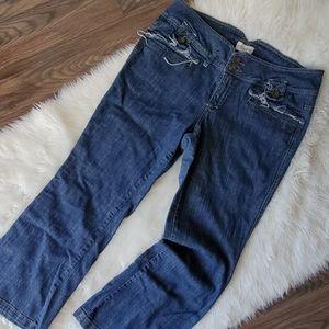 Venezia Lane Bryant 20 boot cut jeans VGUC